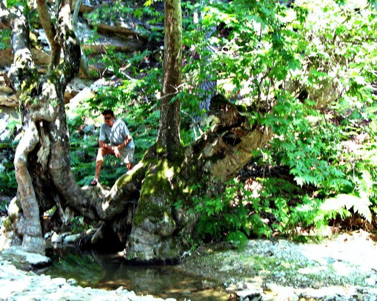 Satele de munte din insula Thassos