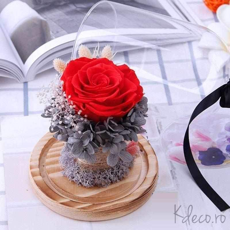 Cadouri deosebite trandafiri criogenați